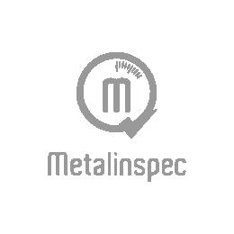 Logo de Metalinspec